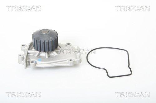 Wasserpumpe TRISCAN 8600 40001